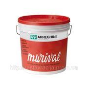 Матовая, моющаяся краска для внутрених и наружных работ ( Murival Esterno), белая, 1 литр фото