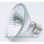 Лампа JliHiPiHi 230В 100, 150 Вт/ 78 мм фото