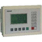 Весовой контроллер многофункциональный программируемый пользователем типа ТМК 03 фото