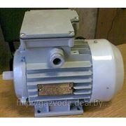 Электродвигатель к насосу типа Прокон-Пумп фото