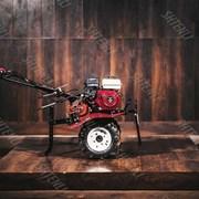 Мотоблок Shtenli (Штенли) 900, 8 л.с., колеса 4*8 с фарой и дифференциалами фото