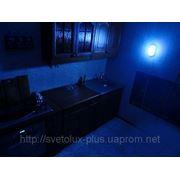 Светильник светодиодный «Таблетка-3,5Вт» 12V; 220V: фото