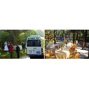 Организация свадьб. фото
