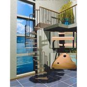 Bинтовая лестница Mars, чёрный цвет металл. стоек и столба фото
