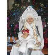 Пошив карнавальных костюмов 34-П фото
