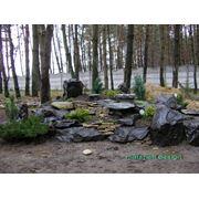 Дизайн дачного участка в лесу фото