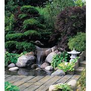 Вода в саду фото