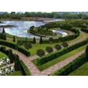 Проектирование ландшафта сада Симферополь Крым фото