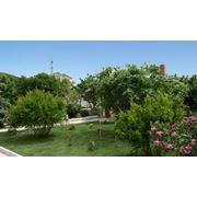Ландшафтный дизайн сада Севастополь фото