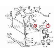 Патрубок охлаждающей жидкости нижний 1.3MJTD Doblo 51757915 фото