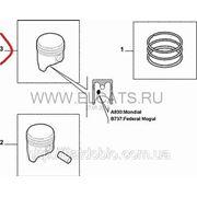 Поршень с кольцами STD 1.4 8v Doblo 2005-2009 55204025 фото