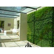 Озеленение внутреннее фото