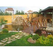 Озеленение сада. Украина. фото