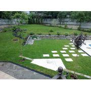 Озеление малых садов фото