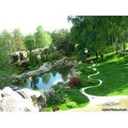 Озеленение территорий и ландшафтный дизайн фото