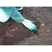 Подготовка почвы для посадки сада в УкраинеОдесса Купить Цена фото