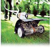 Скарификация (вычесывание газона) услуги садовника фото