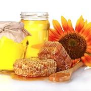 Подсолнечный мед фото