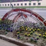 Цветочная арка вид 1 фото