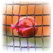Сетка заградительная нейлон (высота 4м длина 100м) фото