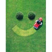 Уход за газонамиУстройство посевного газона с подготовленным грунтом (без ст-ти материала) фото