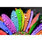 Полноцветная печать на стекле фото