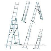 Лестница универсальная раскладная Werk LZ3211В, 3х11 (35277)