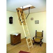 Чердачная лестница Prima - материал (лестница/ступени/короб) дерево/дерево/дерево