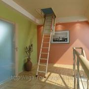 Чердачная лестница Комфорт LWK фото