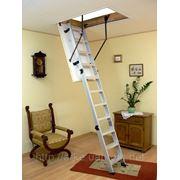 Чердачная лестница Oman Alu-Profi фото