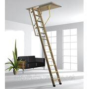 Чердачная лестница Roto Cadet 3 ISO-RC фото