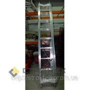 Универсальная лестница ITOSS 7609 (3х9) (15095)