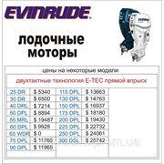 Цены на лодочные моторы Evinrude (Эвинруд) 2012 год. фото