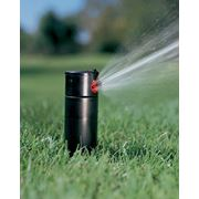 Полив газона . Системы автоматического полива газонов. фото