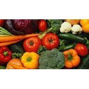Реализация сельскохозяйственной продукции фото