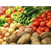 Переработка сельхозпродукции цена Украина фото