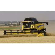 Уборка урожая (зерновых) фото