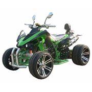 Квадроциклы шоссейные ATV 250D фото