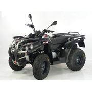 Квадроцикл ACCESS MOTOR BEAR 400 4x4 фото