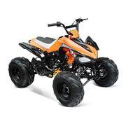 Irbis ATV110S