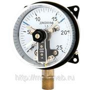 Манометр сигнализирующий ДМ2010ф (0 до 100; 160 mPa), кл. 1,5