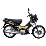мотоциклы SHINERAY XY110-6 фото