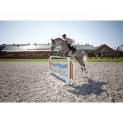 Показательные выступления выездка конкур обучение лошадей дрессура лошадей клуб активного отдыха клуб любителей лошадей фото