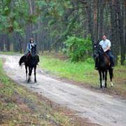 Конные прогулки фото
