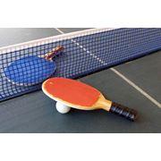 Настольный теннис. фото