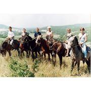 Конные прогулки по горам фото