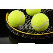 Услуги теннисной академии фото