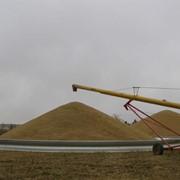 Зернохранилища Behlen фото