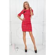 a7b84bf5325 Женское приталенное платье в клетку в расцветках. ПН-1-0918 фото