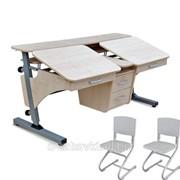 Парта стол и стулья Pondi Эргономик-2 ДСП фото